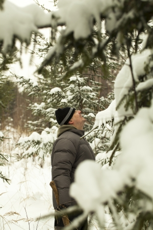 Man looking for a Christmas tree in the woods Stock Photo - 17008814