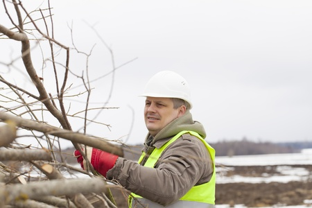 biomasse: orker throws  wooden branches on heap