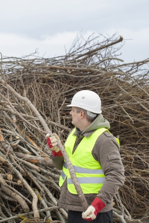 biomasse: Worker throws wooden branches on heap