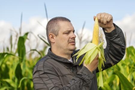 Farmer on the corn field in summer photo