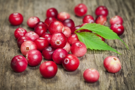 Freshly harvested organic red Cranberries on boards