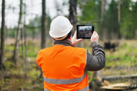 call of nature: Forest Officer with tablet PC in destroyed forest Stock Photo