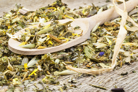 curative:  Curative natural herbal tea on wooden spoon on old table