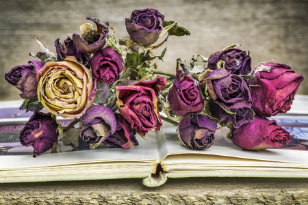 Bouquet of dried roses on old book photo