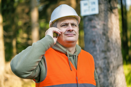 Lumberjack with cell phone near marked tree in forest photo