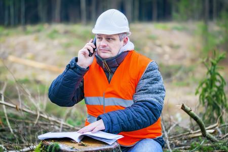 Forest engineer talking on a cell phone in the forest Stockfoto