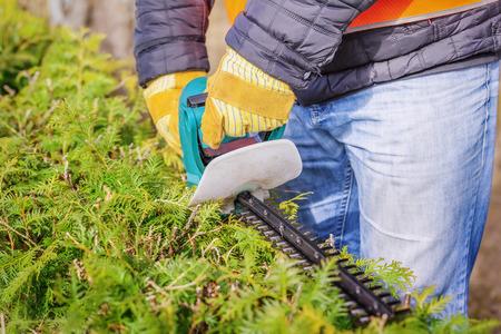 cut off saw: Landscape worker with bush cutter
