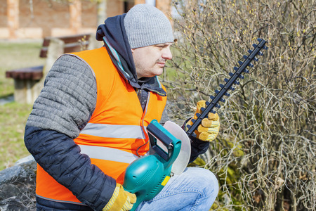 cut off saw: Landscape worker with bush cutter near bush Stock Photo