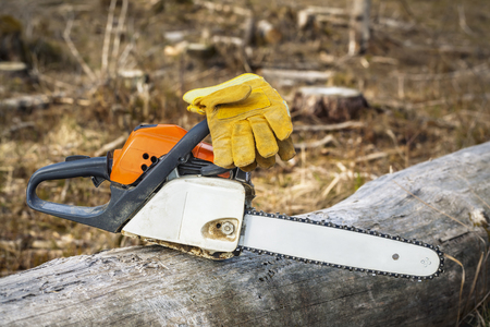 chainsaw: Chainsaw and gloves on tree in destroyed forest