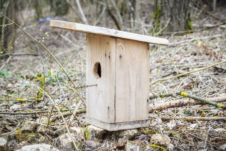 Birdhouse in forest near tree