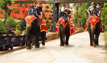 Thailand, Nong Nooch, Pattaya, 28 January 2012, A popular activity for tourists in Thailand, Elephant  riding Editorial