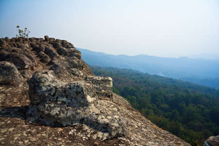 stoney: High stoney cliff above forest Stock Photo