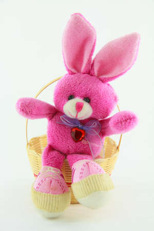 Pink Rabbit sitting on bamboo basket photo
