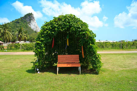 Tree shelter in a green garden with blue sky photo