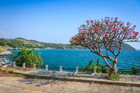 Romantic Viewpoint At Paradise Island photo
