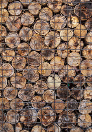 Pile Of Timber Wood Background photo