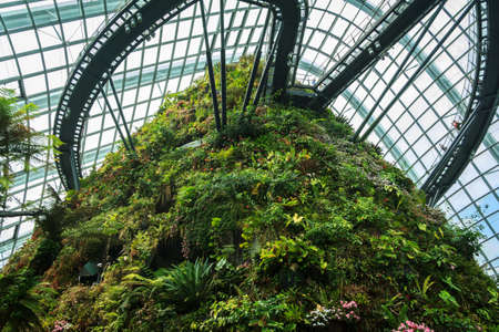 SINGAPORE-FEB 14  Cloud Forest Dome at Gardens by the Bay on February 14, 2014 in Singapore  Spanning 101 hectares of reclaimed land in central Singapore, adjacent to Marina Reservoir