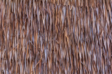 Dry Thatched Roof Close Up Background photo