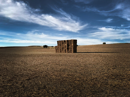Big square bales of straw on farmland and cloudy sky