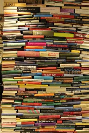 net book: Books