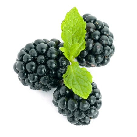 Picture of blackberries on white.