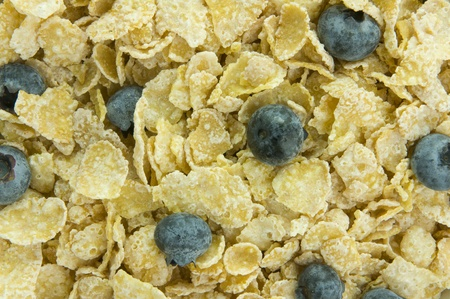 Picture of cereal with blueberries.