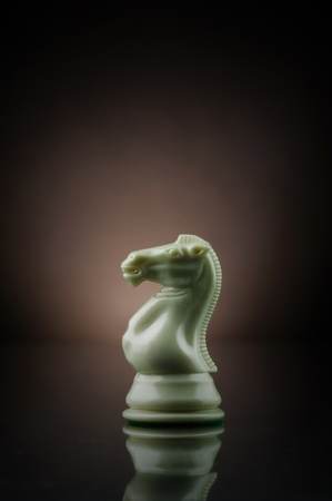 Picture of a white chess knight. Stock Photo