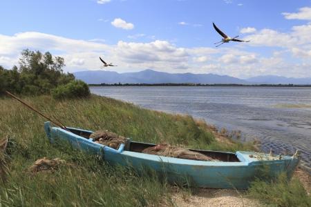 barque: Etang et barque  Stock Photo