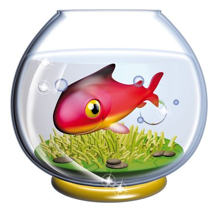 cramped: Fish in the fishbowl