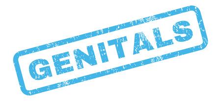 genitali: Genitali gomma testo bollo filigrana. Tag all'interno di forma rettangolare con il disegno del grunge e la consistenza della polvere. adesivo inchiostro blu inclinato glifo su uno sfondo bianco.
