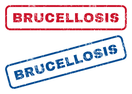 pandemic: Brucellosis text rubber seal stamp watermarks. Vector style is blue and red ink tag inside rounded rectangular banner. Grunge design and unclean texture. Blue and red signs.