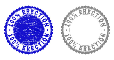 100% ERECTION stamp seals with distress texture in blue and gray colors isolated on white background. Vector rubber imprint of 100% ERECTION caption inside round rosette. Illustration