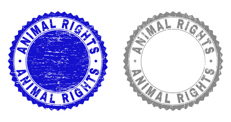 Grunge ANIMAL RIGHTS stamp seals isolated on a white background. Rosette seals with grunge texture in blue and grey colors. Vector rubber imitation of ANIMAL RIGHTS caption inside round rosette.