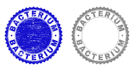 Grunge BACTERIUM stamp seals isolated on a white background. Rosette seals with distress texture in blue and grey colors. Vector rubber imitation of BACTERIUM title inside round rosette. Ilustração