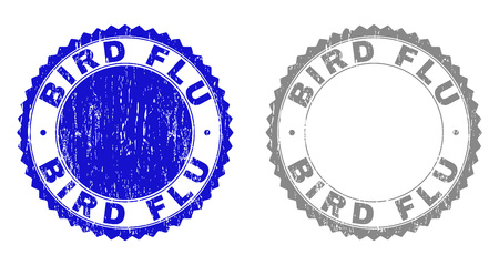 Grunge BIRD FLU stamp seals isolated on a white background. Rosette seals with grunge texture in blue and grey colors. Vector rubber watermark of BIRD FLU title inside round rosette.