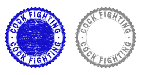 Grunge COCK FIGHTING stamp seals isolated on a white background. Rosette seals with grunge texture in blue and grey colors. Vector rubber stamp imitation of COCK FIGHTING label inside round rosette.