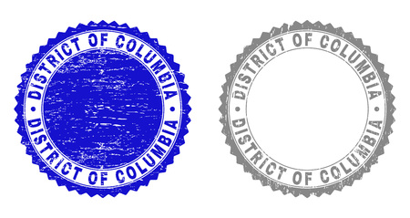 Grunge DISTRICT OF COLUMBIA stamp seals isolated on a white background. Rosette seals with grunge texture in blue and grey colors.