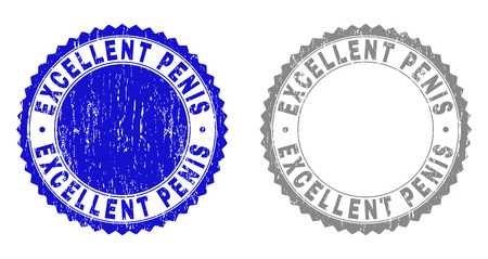 Grunge EXCELLENT PENIS stamp seals isolated on a white background. Rosette seals with grunge texture in blue and grey colors. Vector rubber stamp imprint of EXCELLENT PENIS text inside round rosette.