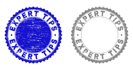 Grunge EXPERT TIPS stamp seals isolated on a white background. Rosette seals with grunge texture in blue and gray colors. Vector rubber stamp imprint of EXPERT TIPS label inside round rosette.