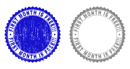 Grunge FIRST MONTH IS FREE!!! stamp seals isolated on a white background. Rosette seals with grunge texture in blue and gray colors. Banque d'images - 125477456