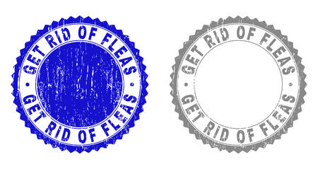 Grunge GET RID OF FLEAS stamp seals isolated on a white background. Rosette seals with distress texture in blue and gray colors. Illustration