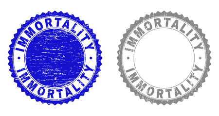 Grunge IMMORTALITY stamp seals isolated on a white background. Rosette seals with grunge texture in blue and gray colors. Vector rubber stamp imitation of IMMORTALITY text inside round rosette. Illustration