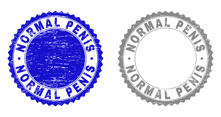 Grunge NORMAL PENIS stamp seals isolated on a white background. Rosette seals with grunge texture in blue and gray colors. Vector rubber watermark of NORMAL PENIS text inside round rosette.