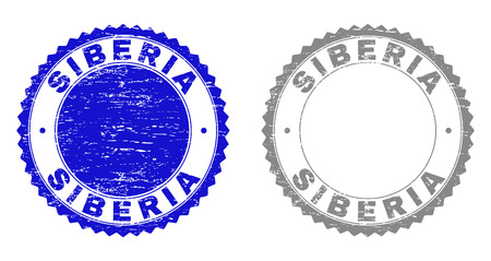 Grunge SIBERIA stamp seals isolated on a white background. Rosette seals with grunge texture in blue and gray colors. Vector rubber watermark of SIBERIA text inside round rosette.  イラスト・ベクター素材