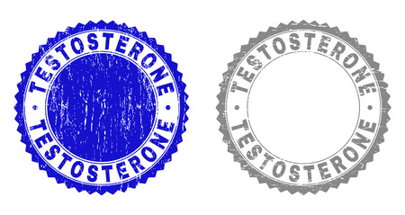 Grunge TESTOSTERONE stamp seals isolated on a white background. Rosette seals with grunge texture in blue and grey colors. Vector rubber stamp imprint of TESTOSTERONE title inside round rosette.