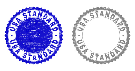 Grunge USA STANDARD stamp seals isolated on a white background. Rosette seals with grunge texture in blue and grey colors. Vector rubber watermark of USA STANDARD label inside round rosette.