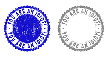 Grunge YOU ARE AN IDIOT! stamp seals isolated on a white background. Rosette seals with distress texture in blue and gray colors. Illustration