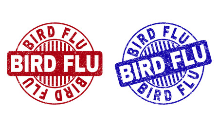 Grunge BIRD FLU round stamp seals isolated on a white background. Round seals with grunge texture in red and blue colors. Vector rubber watermark of BIRD FLU caption inside circle form with stripes.