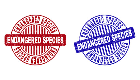 Grunge ENDANGERED SPECIES round stamp seals isolated on a white background. Round seals with grunge texture in red and blue colors.