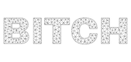 Mesh vector BITCH text. Abstract lines and dots are organized into BITCH black carcass symbols. Wire carcass flat triangular mesh in vector format.
